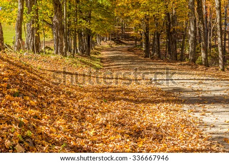 country road in fall, Vermont