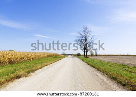 Country Road - Loose Gravel - stock photo