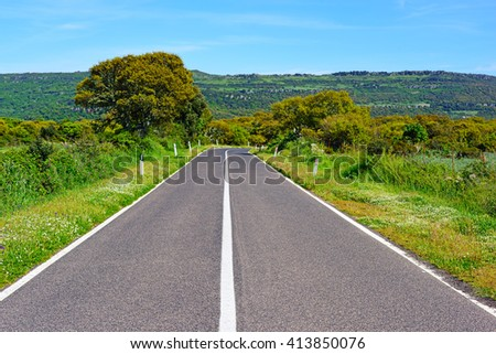 country road on a clear day in Sardinia, Italy - stock photo