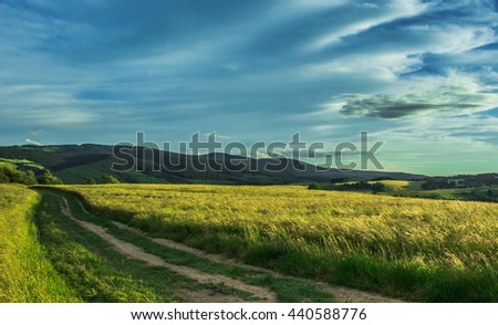 Country road on the grassy meadow - stock photo
