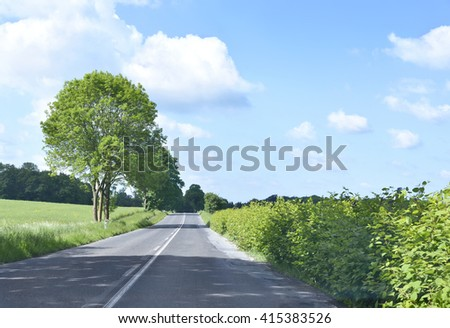 Country road or lane in springtime. Nature background with flower field, green trees and empty road. Pasture with wooden fence on the right and open meadow on the left. - stock photo