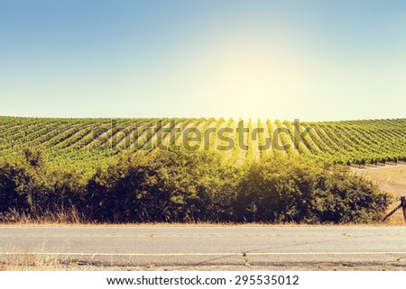 Country Road Side View in California  - stock photo