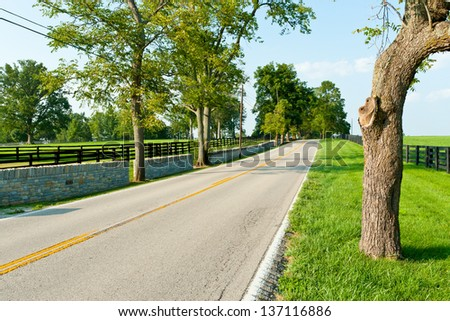 Country road surrounded the horse farms at summer - stock photo