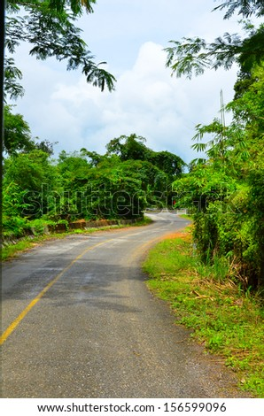 Country road with trees. - stock photo