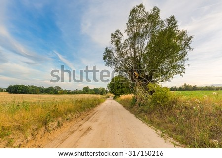 Country rural sandy road near fields. Autumnal landscape taken at good weather. - stock photo