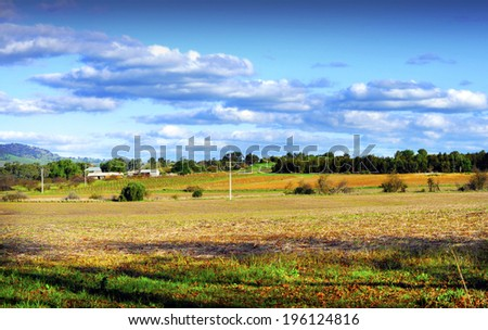 Country scene with rows of grape vines in background. Taken in Autumn Fall at Barossa Valley, South Australia. - stock photo
