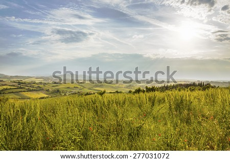Countryside and sun