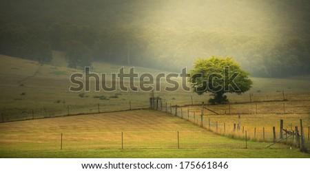 Countryside Australia - stock photo