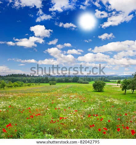 countryside. beautiful meadow and cloudy blue sky - stock photo