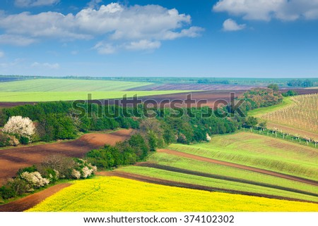 Countryside Colorful Fields and Sky Background - beautiful nature landscape, idillyc waves of hills, wallpaper - stock photo