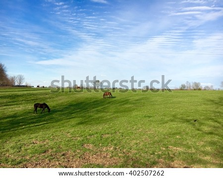Countryside, green pastures of horse farm. - stock photo
