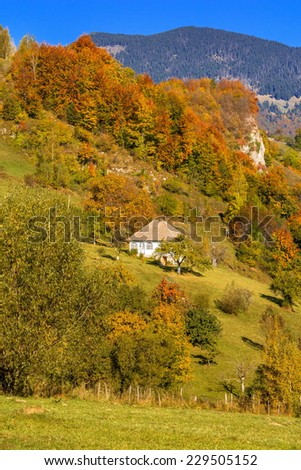 Countryside landscape in a romanian villlage at the food of Piatra Craiului Mountains.