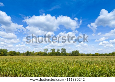 Countryside Landscape With Blue Cloudy Sky - stock photo