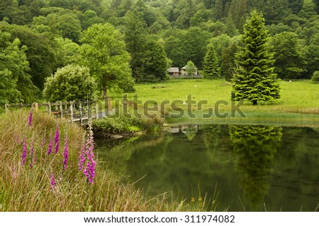 Countryside landscape with flowering meadows,pond and forest in background, UK, Europe - stock photo