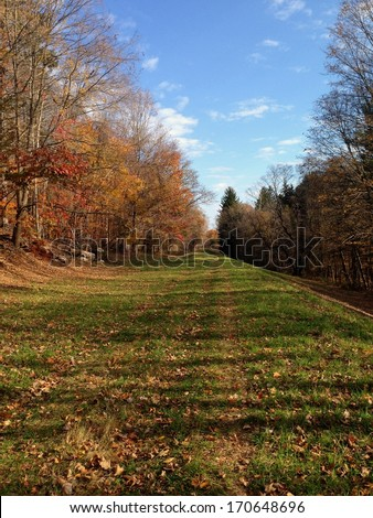 Countryside Path