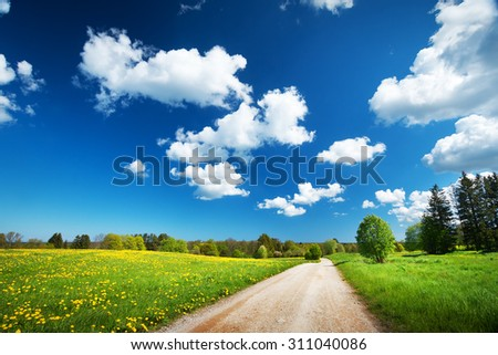 Countryside road on the field and fluffy clouds in the sky - stock photo