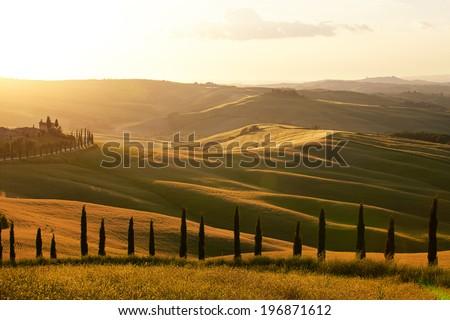 Countryside, San Quirico d`Orcia , Tuscany, Italy - stock photo