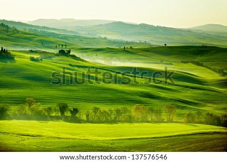 Countryside, San Quirico ���´Orcia , Tuscany, Italy - stock photo