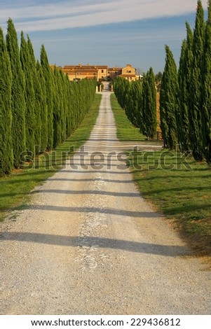 Countryside, San Quirico, Orcia , Tuscany, Italy - stock photo