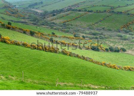 Countryside scene at Western Ireland - stock photo