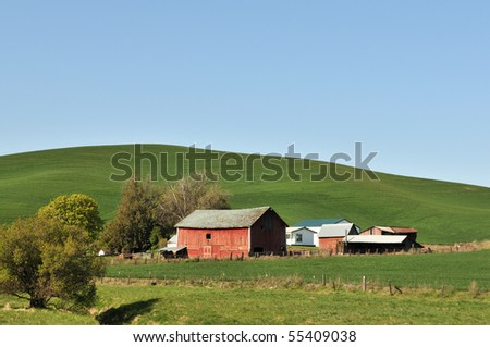 Countryside scene in spring near Colfax in Washington State
