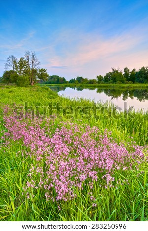 Countryside spring summer Narew river landscape flowers blue sky clouds countryside Poland - stock photo