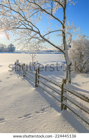 Countryside winter landscape with snow - stock photo