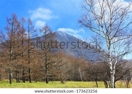 Countryside with mountain and tree - stock photo