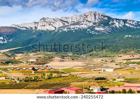 Countryside with vineyards near Laguardia village in northern Spain - stock photo