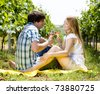 couple at a picnic in vineyard - stock photo