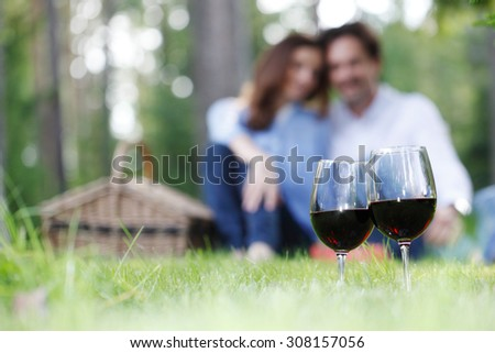 couple at picnic in the park - stock photo