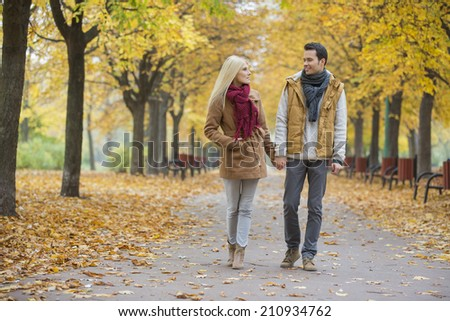 Couple holding hands while walking in park during autumn - stock photo