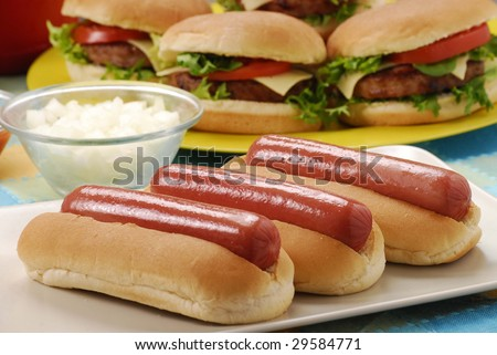 Couple Hotdogs,hamburgers and ingredients. Fast food composition. - stock photo