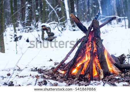 couple in love near the fire, winter, snow