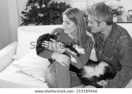 Couple in the 30s on the couch relaxing with their dog celebrating Christmas. - stock photo