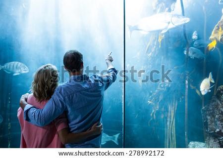 Couple looking at fish in tank at the aquarium - stock photo