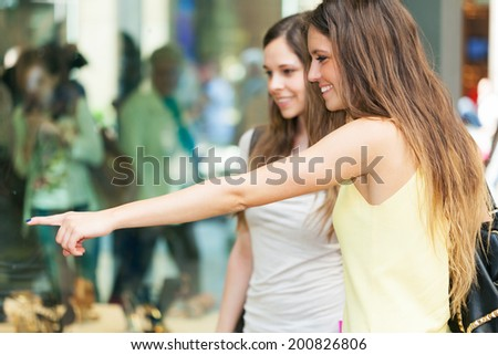 Couple of smiling women doing shopping - stock photo