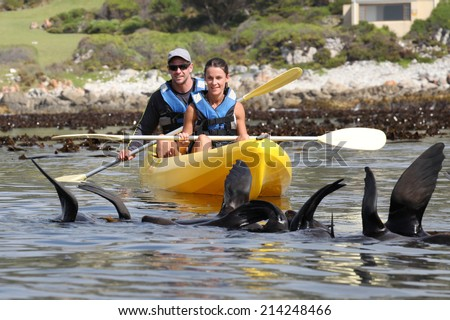 Couple on a kayak looking at seals in the ocean. - stock photo
