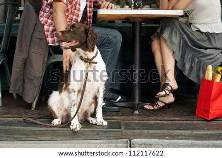 Couple sitting with dog at restaurant - stock photo