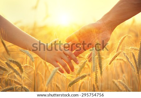Couple taking hands and walking on golden wheat field over beautiful sunset.  - stock photo