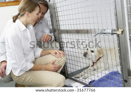 Couple Visiting Pet Dog - stock photo