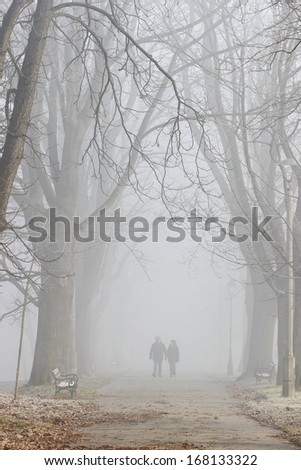 Couple walking in mist. October morning in old park - stock photo
