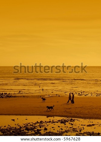 Couple walking on the beach at sunset with two dogs