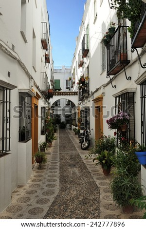 courtyard during the Festival of the Patios (el Festival de los Patios Cordobeses), Cordoba, Spain - stock photo