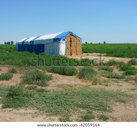 covered stacks of hay in farm field