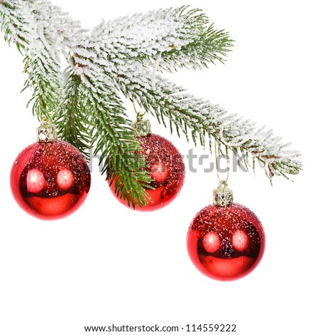 covered with snow branch of a Christmas tree and three brilliant red balls  isolated on white background - stock photo