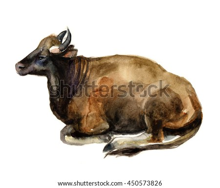 Cow - a symbol of India. Cow . Cow watercolor illustration . Milking cows breed . Indian cow. creative watercolor poster. cow tee-shirt graphic - stock photo