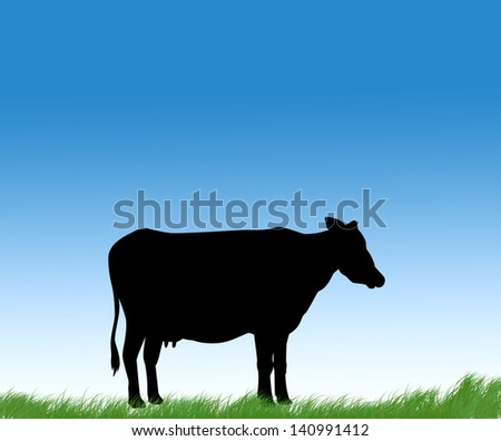 cow in front of blue sky background