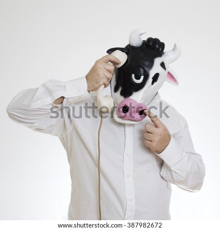 Cow masked man answers the phone - stock photo