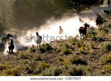 Cowboy galloping and roping through the desert with ten horses - stock photo